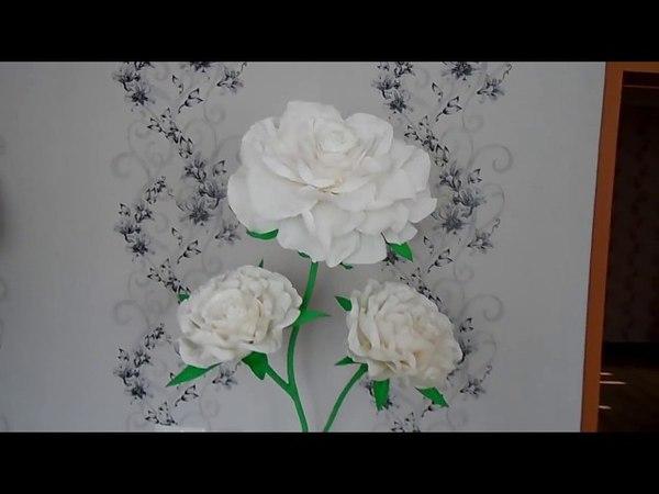 Ростовые цветы моя белая РОЗА и красивая стойка.