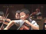 Salut d'amour (Edward Elgar) Cello