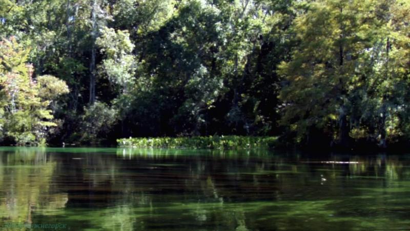 BBC «Как нас создала Земля (1). Вода» (Познавательный, исследования, 2010)