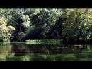 BBC Как нас создала Земля 1 Вода Познавательный исследования 2010