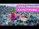 ВАЖНОСТЬ РАЗДЕЛЬНОГО СБОРА ОТХОДОВ - ЮЛИЯ ЛАПШИНА на ВегМарт