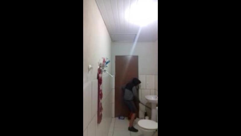 Как парень из Португалии и его кот решили поохотиться на крысу в туалете