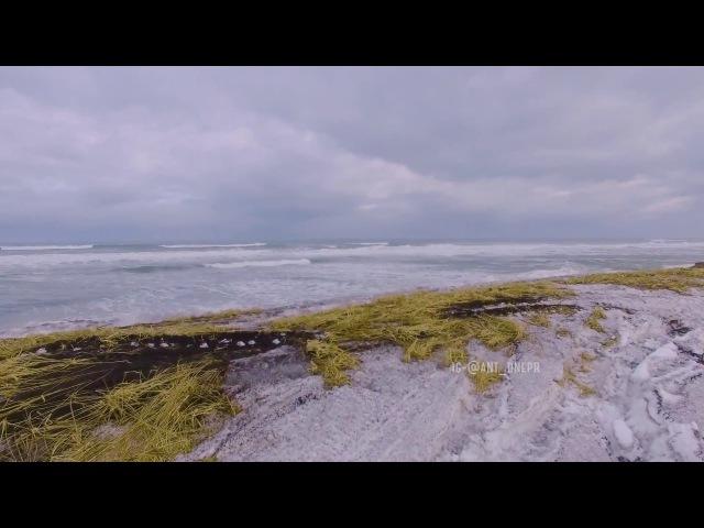 Невероятная красота тихого океана Ocean 4k ursa mini Kamchatka Камчатка Халатырский пляж