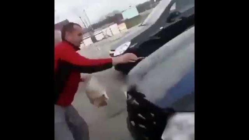 Урод-живодер помыл котом свою машину, и доволен этим