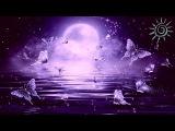 Relaxing Sleep Music, Instrumental Music, Calm Music, Soft Music, Sleep Meditation