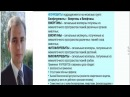 Виоргон 06 Биофлуревит почек М Краснов САД Система Активного Долголетия