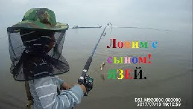Ловим язей для собак на спиннинг с сыном! Yakutia Якутия заполярье
