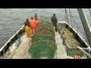 Вести.Ru: Тайна исчезновения Востока : кому выгодна смерть моряков?