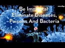 Be Immortal Eliminate Diseases Poisons And Bacteria Subliminal