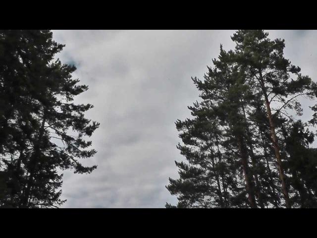 Caribace Dub Club @ День Вне Времени 2013