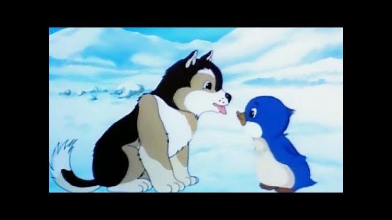 Приключения пингвинёнка Лоло 1 серия