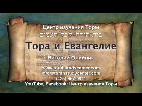 31. Недельная глава Торы «ЭМОР» (Лев. 21:1 - 24:23) — Виталий Олийник