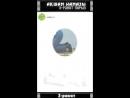 Ақшам намазы. 3 рәкат парыз-1.mp4