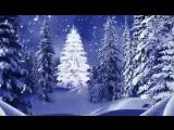 video-8f3245752defeae356384a751617c961-V.mp4
