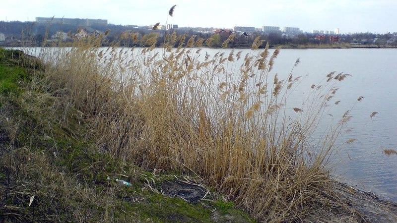 Журавлёвка Харьков 2006 04 18