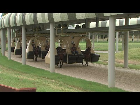 £20m jockey-less monorail for horses unveiled