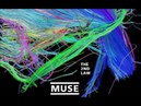 Muse - Isolated System G minor (Half Step Up)
