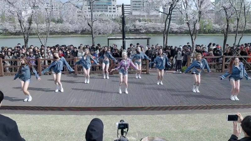 ALiEN 에일리언 x Soya 소야 ¦ SHOW ¦ Flashmob 플래시몹 Filmed by lEtudel