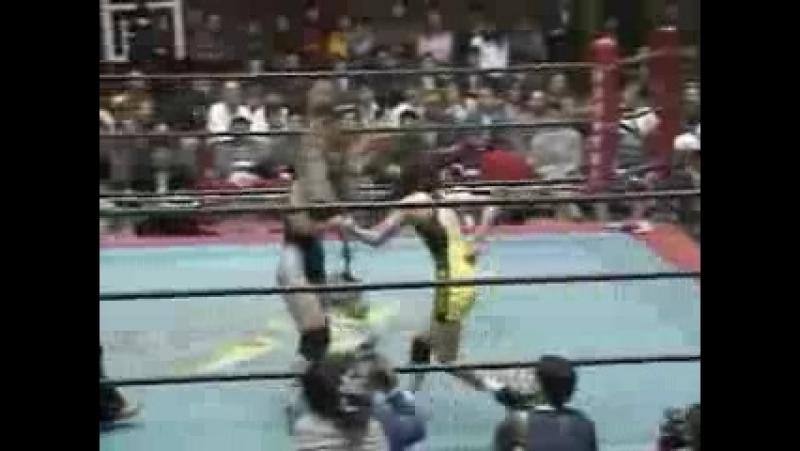 2. Chikayo Nagashima vs. Miwa Sato (4/4/1996)
