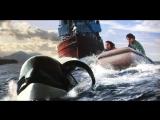 Освободите Вилли 3: Спасение / Free Willy 3 (1997) BDRip 720p [vk.com/Feokino]