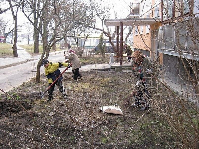 Добровольная экологическая акция «Мой двор» в Бресте - 9 лет