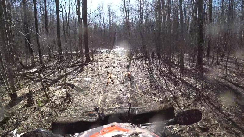 Врезался в дерево Кондакопшинский лес 14 04 18