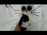 Тимоха и снего-баба-кот