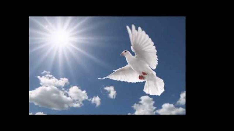 ЗАХОТЕЛА ПЕТЬ ДУША. Музыка, исполнение - Игорь Малыгин. Стихи и видеоряд - Александр Кропачев.