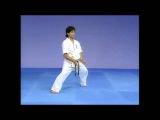 Каратэ Киокушинкай Ката - Сейнчин Kyokushin Karate Kata - Seienchin