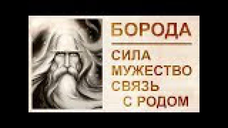 Борода - богатство Рода