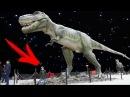 Выставка ЖИВЫЕ ДИНОЗАВРЫ Харьков Арт Завод Механика / Dinosaur Science Childrens Museum for kids