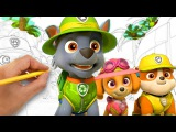 Coloring PAW Patrol Pups in the Jungle Coloring Book Video for Kids