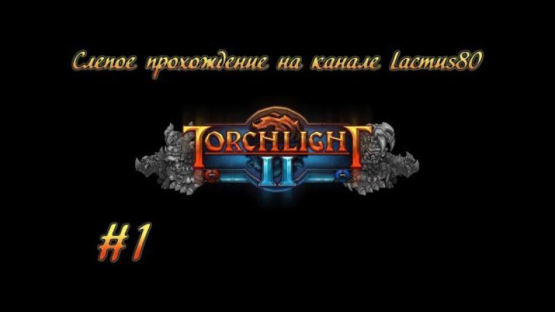 Torchlight II вслепую 1 Предупреждение