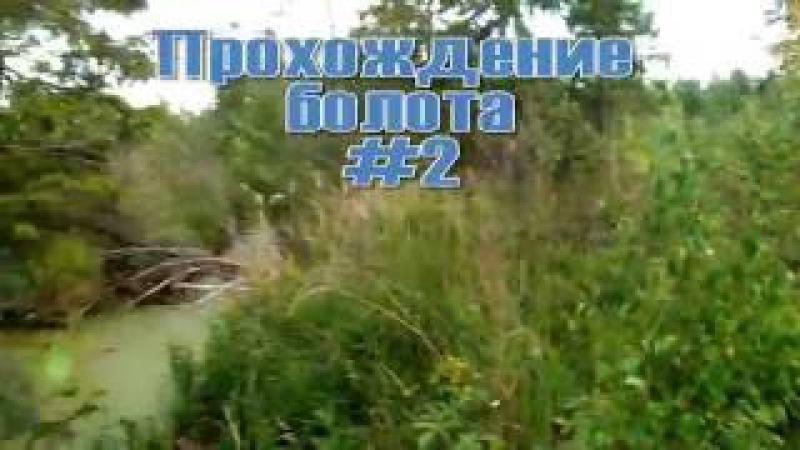Прохождение болота 2