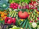 Во саду ли в огороде Семена О Которых Все Говорят Буду Сеять Это Чудо Обзор Семян