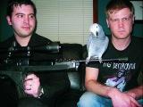 Hatebeak  A Death Metal Band Whose Lead Vocalist Was a Parrot