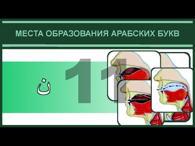 Айман Сувейд. 11. Буква ن ( субтитрами на русском)
