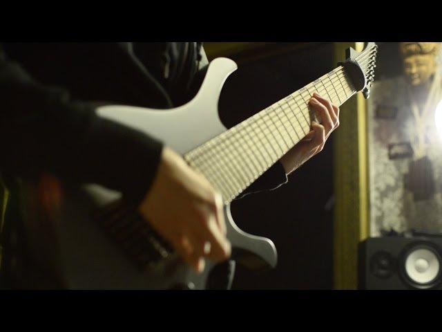 Meshuggah - Demiurge (Skervesen Swan 8 Guitar, Bass Vocal Cover)