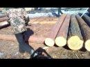 Сортировка круглого леса торцевиками под краном стропальщиками на пилораме Работа с лесом