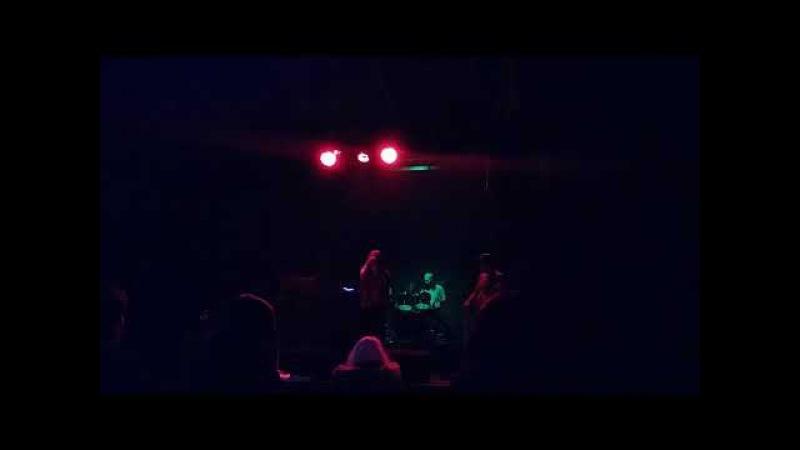Anion Effect - Talviyö (The Dark Forest) (Live 30.12.2017)