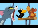 Tom and Jerry and Talking Black Bird NEW Episodes