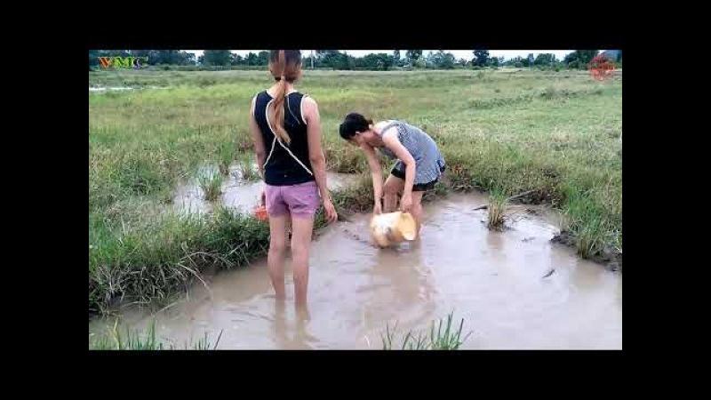 Cô gái xinh đẹp đi bắt cá - Cuộc sống quê tôi 14   Beautiful girl to catch fish - Life in my country