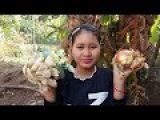 Awesome Healthy Cooking Chicken W Lemongrass Recipe - Cook Chicken Recipes - Village Food Factory