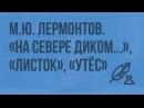 23. М.Ю. Лермонтов. «На севере диком…», «Листок», «Утес»