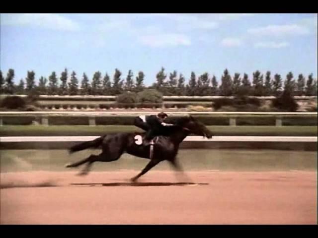 The Black Stallion Race Rescored Whit Return To Snowy River Music