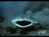 Морской ангел (плоскотелая акула) слопала рогатую акулу,а потом передумала-хоть и дальняя, но всё равно родственница.