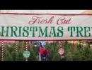 ENG Трейлер фильма «Здравствуй, папа, Новый год! 2 — Daddys Home 2». 2017.