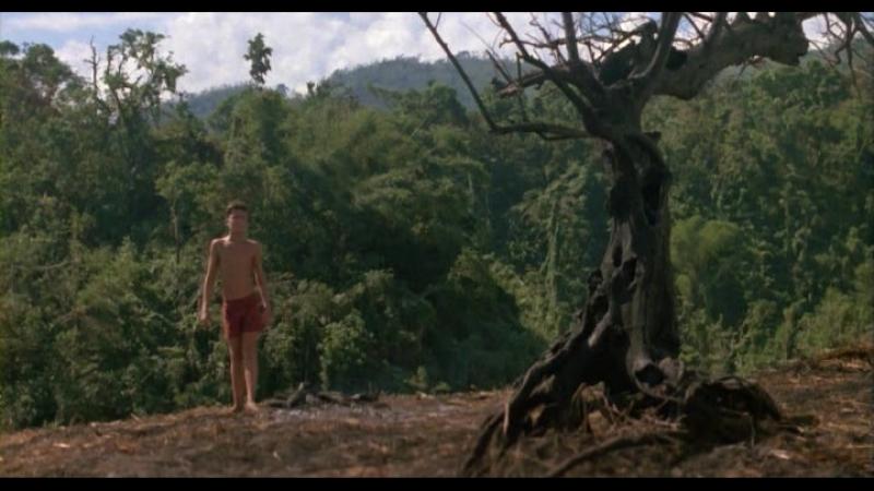 «Повелитель мух» (1990) - триллер, драма, приключения. Гарри Хук