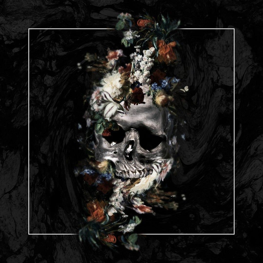 Curses - Rest [Single] (2018)