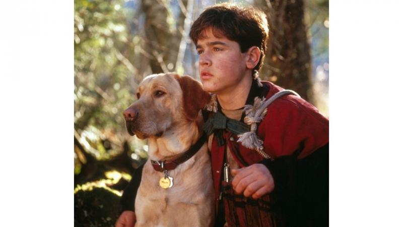 X/ф - Далеко от дома: Приключения Жёлтого пса (приключения, семейный).